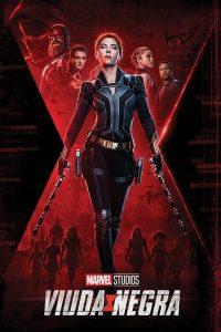 "Poster for the movie ""Viuda negra"""